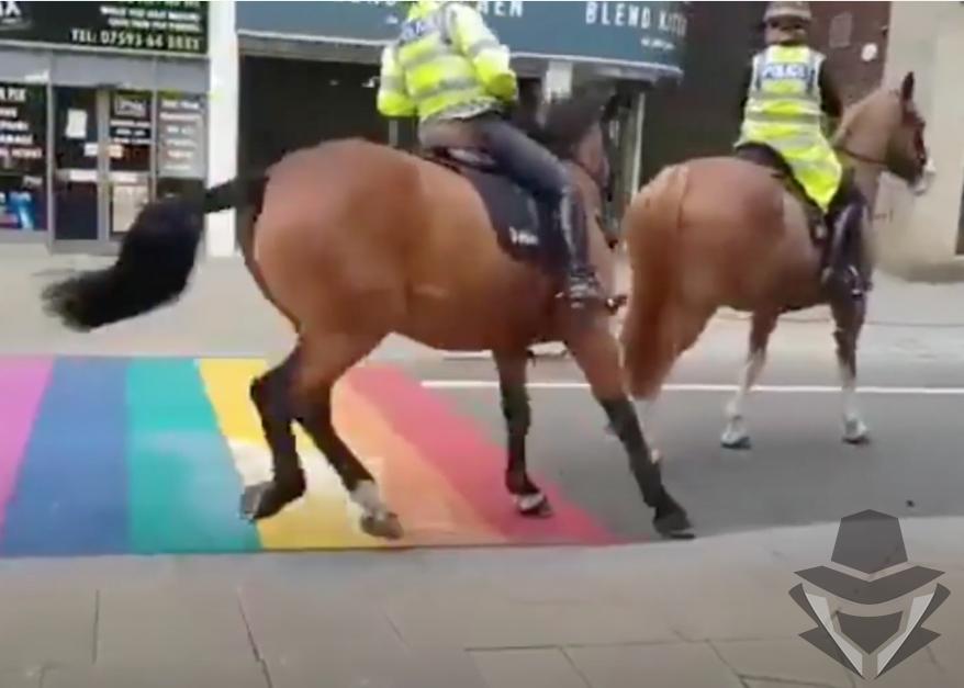 žirgams nepatiko LGBT simbolika